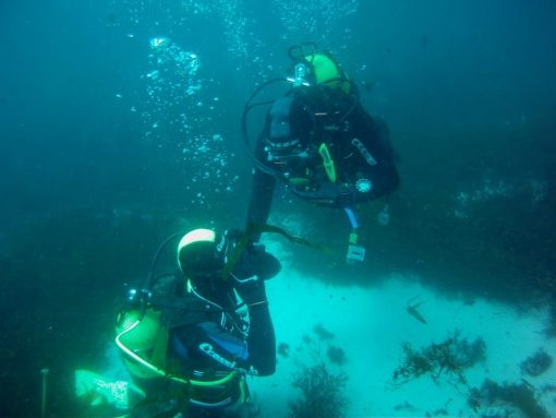 Curso PADI advance water diver