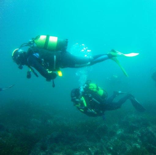 Diving Sanxenxo