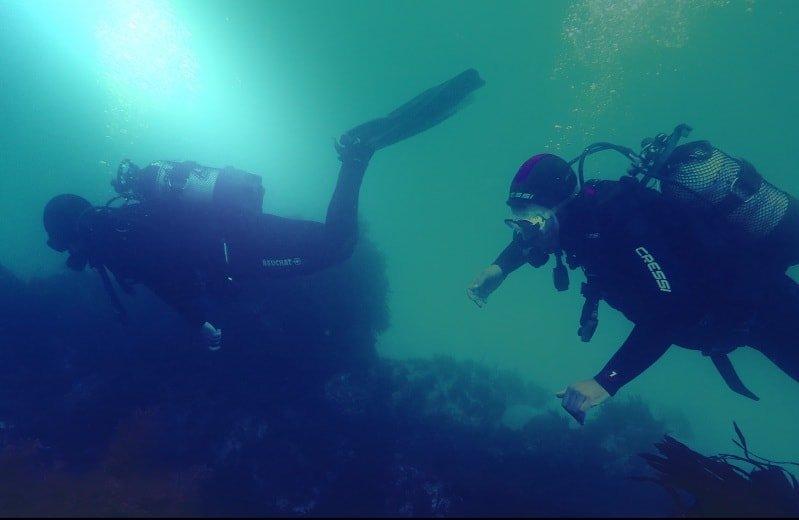 Reserva online cursos PADI submarinismo