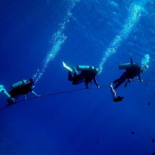 especialidad buceo en corrientes
