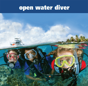 Open Water Diver Diving Course