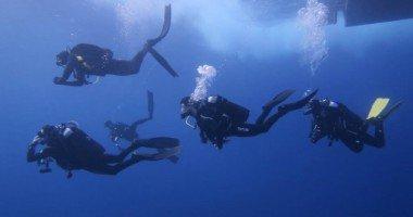 Diving in Portonovo