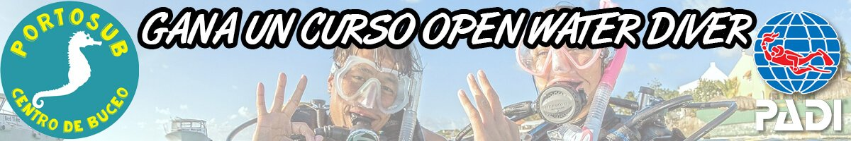 concurso web open water
