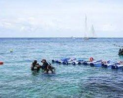 Buceo desde Costa y en Embarcación