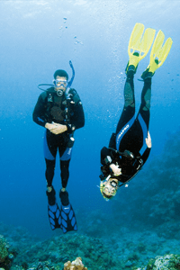 Diving course promotion price