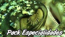 5 Especialidades de Buceo + Curso Advanced